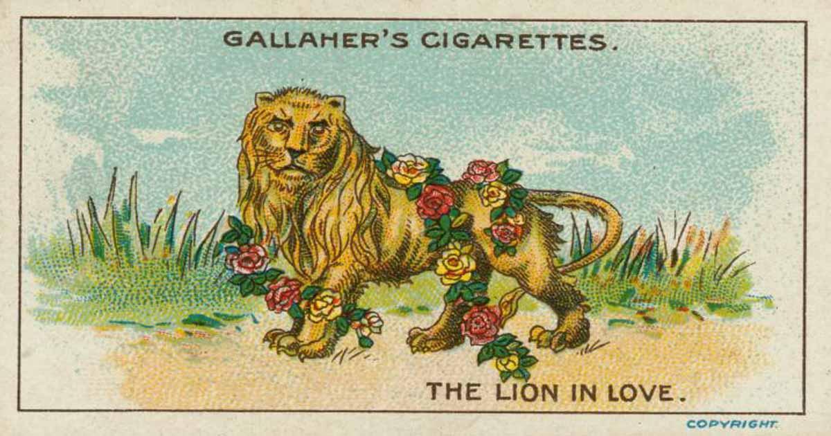นิทานภาษาอังกฤษ สิงโตตกหลุมรัก